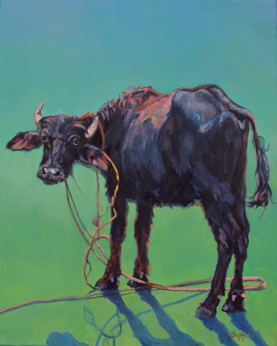 H2O Buffalo :: Artwork by Patricia A. Griffin