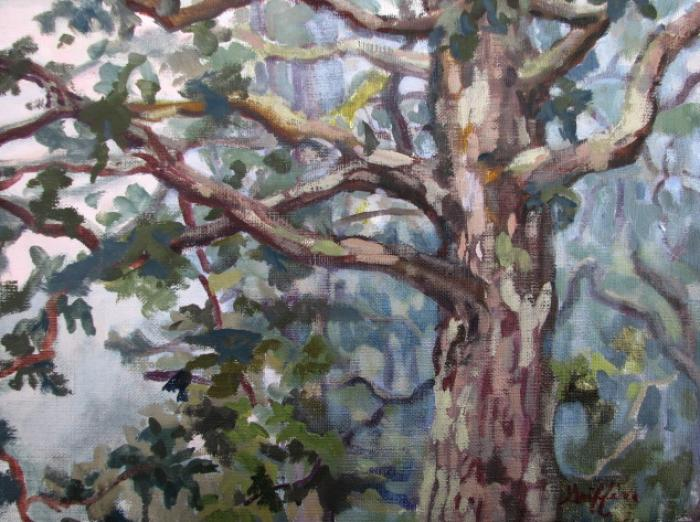 Shanendoah Fog :: Artwork by Patricia A. Griffin