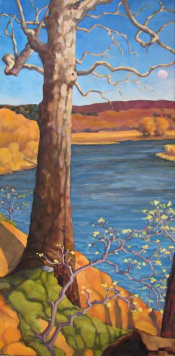 Sweet Sycamore :: Artwork by Patricia A. Griffin