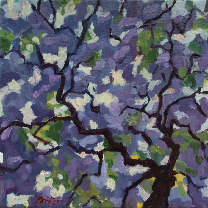 Syringa :: Artwork by Patricia A. Griffin